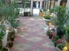 внутренний дворик_фото 2